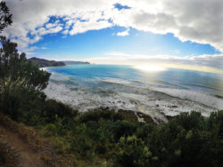 Beach Track View